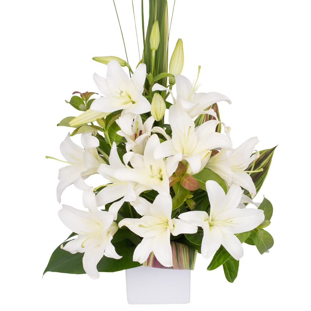 Sympathy Flowers & Funeral Arrangements