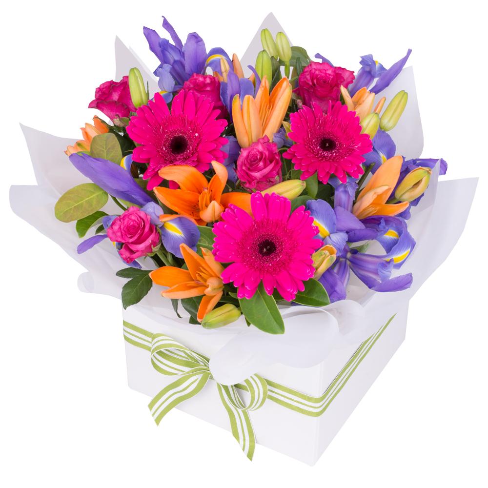 Flowers for every ocassion florist sydney birthday flowers izmirmasajfo