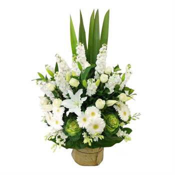 Arrangement front facing - Classic White and Green Flowers