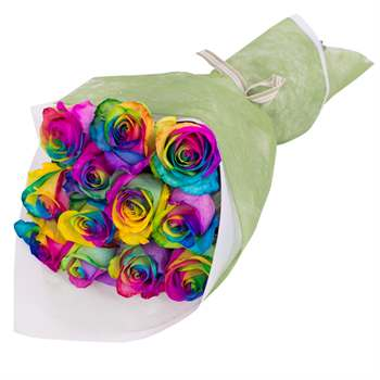 Bouquet of 12 Roses Rainbow Flowers