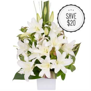 Elegance in Flowers - White Flowers