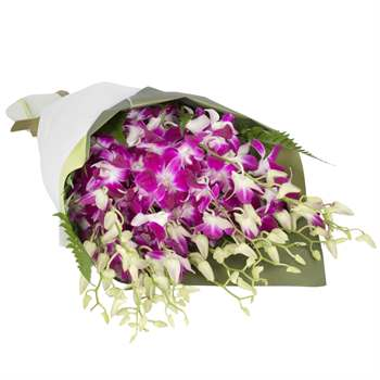 Orchid Arrangement - Purple Flowers