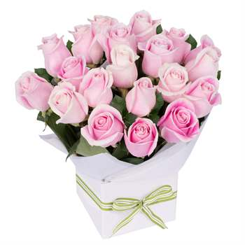 Pretty in Pink Roses Flowers