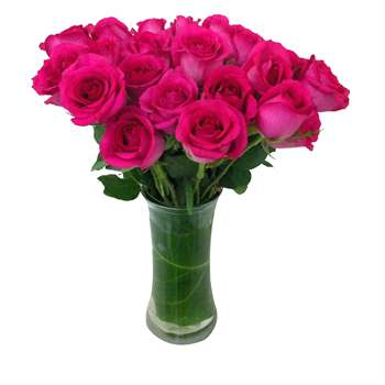 Rose Arrangement - Hot Pink Flowers