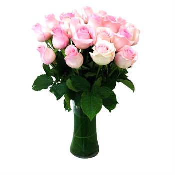 Rose Arrangement - Pale Pink Flowers