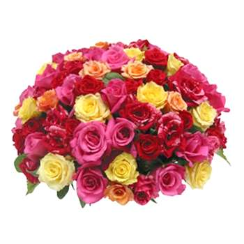 Rose Bowl of 50 Multi Colour Roses in a ceramic bowl Flowers