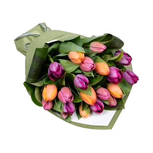 Bouquet of 20 Tulips