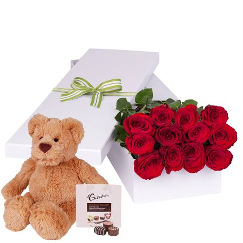Valentine's Day 12 Red Roses with chocs gift boxed PLUS Teddy Bear