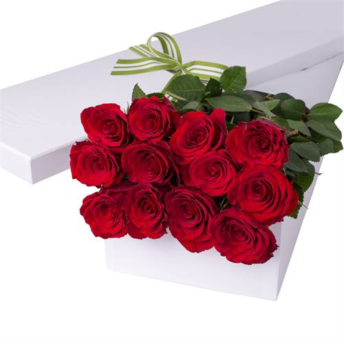 Valentine's Day 12 Red Roses with chocs gift boxed