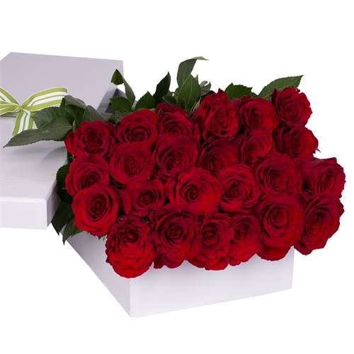 Valentine's Day 24 Red Roses with chocs gift boxed