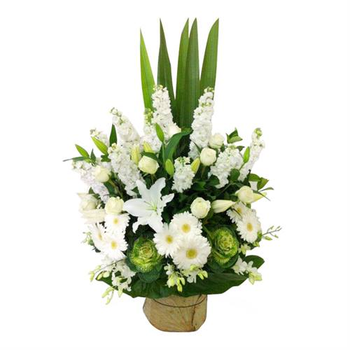 Arrangement front facing - Classic White and Green