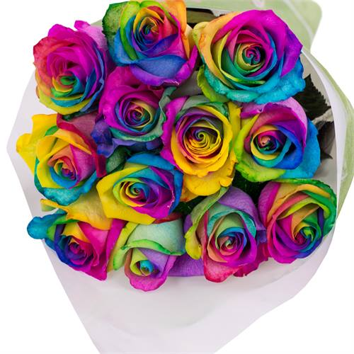 Bouquet of 12 Roses Rainbow