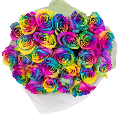 Bouquet of 24 Roses Rainbow