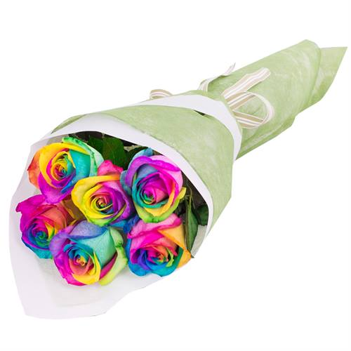 Bouquet of 6 Roses Rainbow