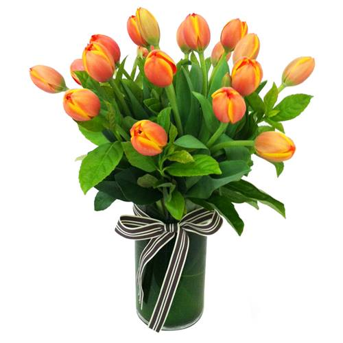 Orange Tulips in a Glass Vase