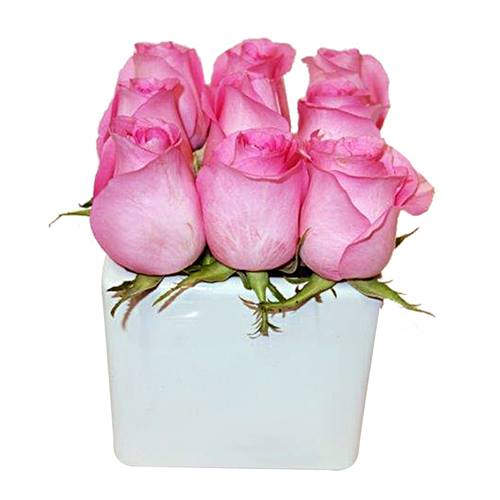 The Pink Rose Cube