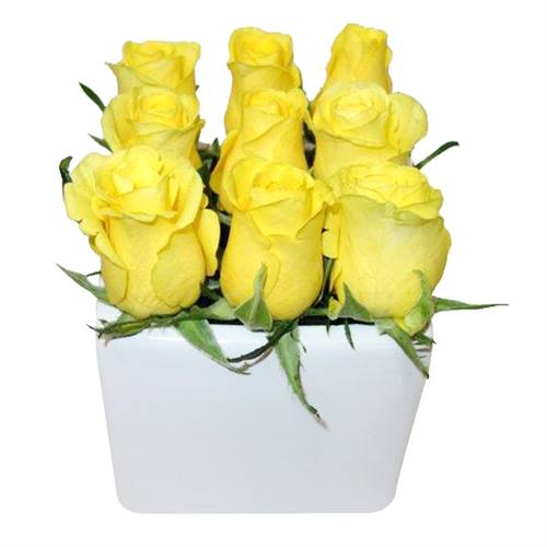 The Yellow Rose Cube